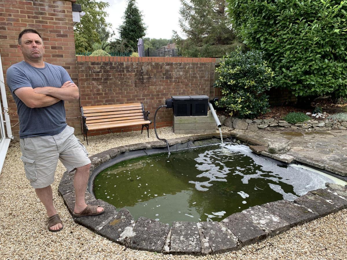Warning as otters return to Swindon and kill garden pond koi