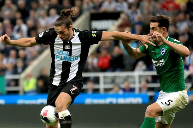 Andy Carroll (left) back in action for Newcastle against Brighton