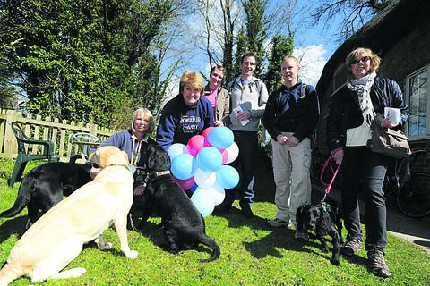 This Is Wiltshire: Participants on the Bishop Cannings Quizzical Cross Country Trial Anne Reeve with her dogs, Elizabeth Frearson, of the Rowdeford Charity Trust, Terina McQuire, Mark McGuire, Spencer Wolf and Pamela Cowles with poppy her dog