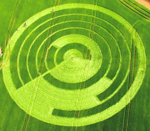 The crop circle at Manton Drove