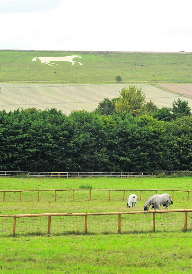 This Is Wiltshire: Devizes White Horse celebration