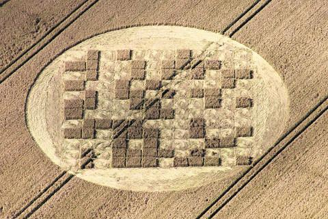 Matthew Williams' photograph of the crop circle that suddenly appeared in field at Hannington