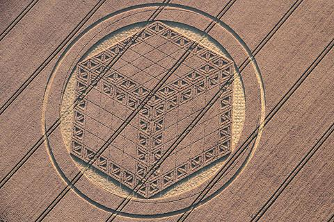 This Is Wiltshire: Could crop circle be Mayan sign?