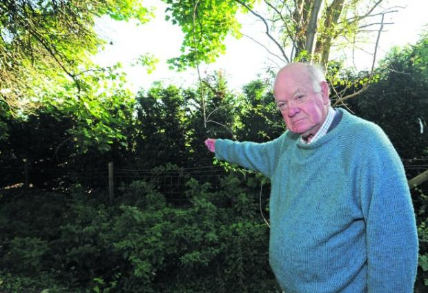 This Is Wiltshire: Christopher Parson wants the yew hedge removed from the boundary of his home near the Priory Church   Photos: Trevor Porter (41058)