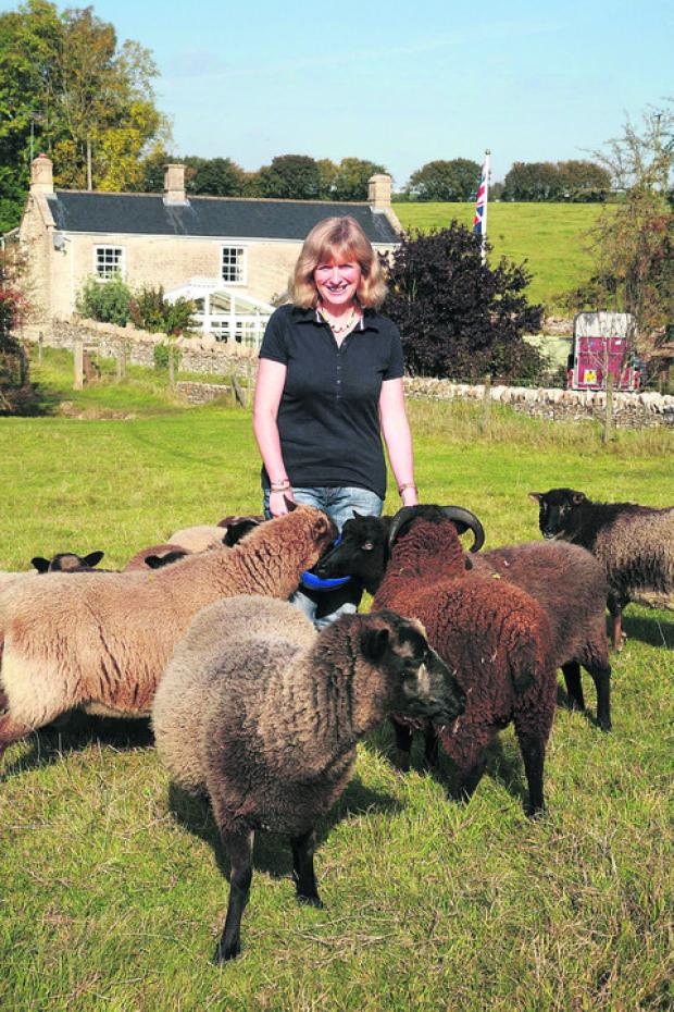 This Is Wiltshire: Author Aly Wilks is well-known among her Nettleton neighbours