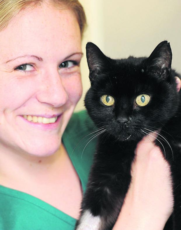 This Is Wiltshire: The rescued cat with Shaw Vets nurse Natalie Hudson