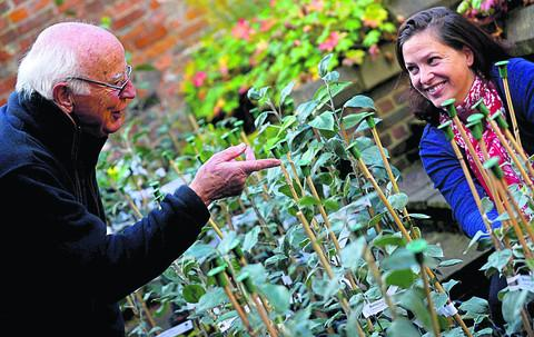 This Is Wiltshire: Richard Shaw helps Kate Hosier to decide which apple tree is best to buy