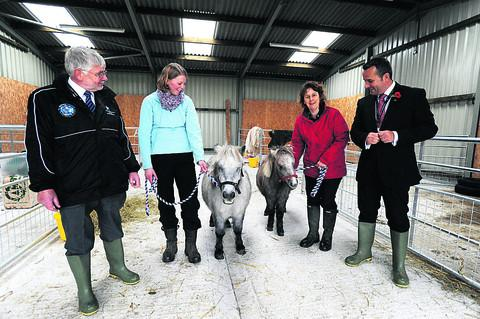 This Is Wiltshire: Miniture Shetland pony Betty and her daughter Lucy with, from left, Peter Rigby, Springfield's manager of extented services, Harriet Baulu, teaching assistant, Laura Jones, Greenfields campus manager, and headteacher Trystan Williams