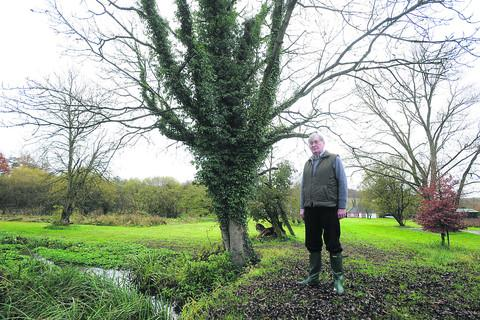 Peter Marren standing next to a healthy ash tree in his family garden