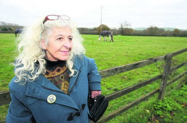 Campaigner Jean Saunders near the site where proposed new housing will be built along Day House Lane