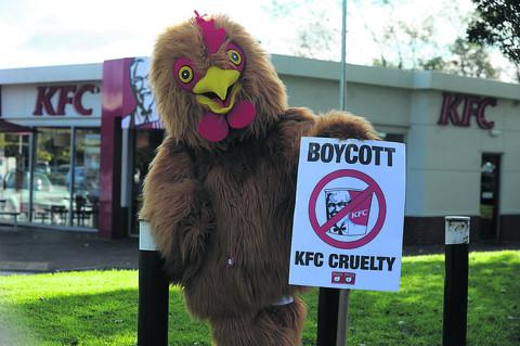Olly Tyler dressed up to protest outside the Trowbridge branch of the KFC chain
