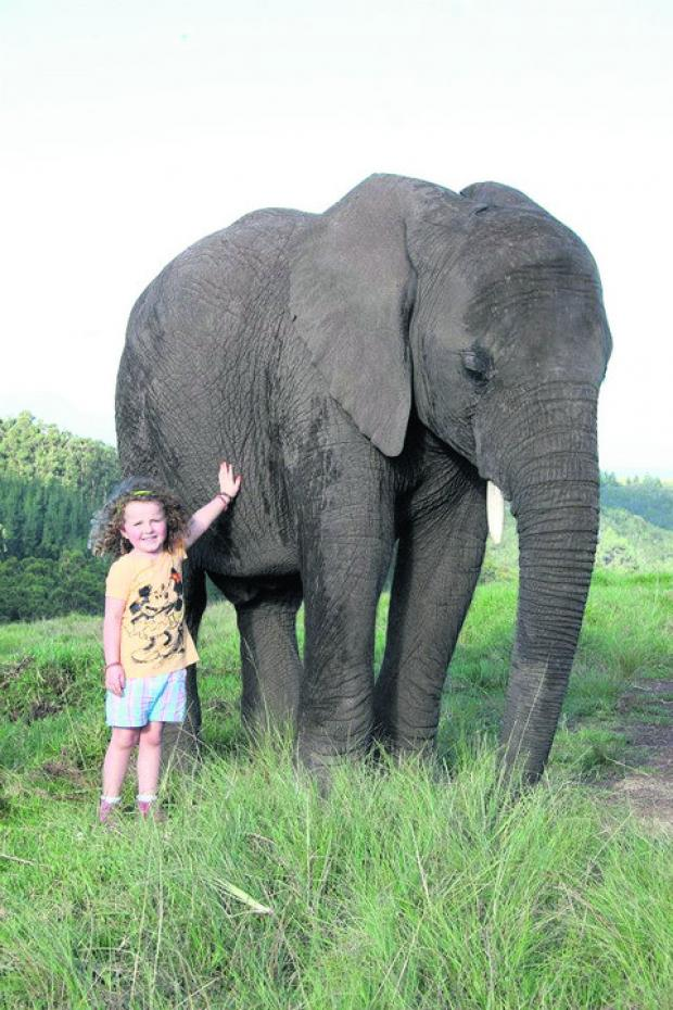 This Is Wiltshire: Poppaea with Mashudu, the elephant she has befriended in South Africa