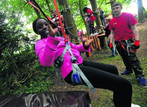Aerial adventure park is planning to expand