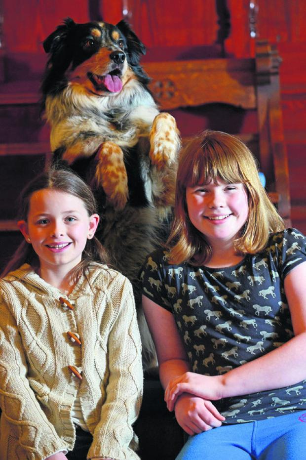This Is Wiltshire: The Annies – Alice Harding and Annabel Howe – with their new co-star, Dexter the dog
