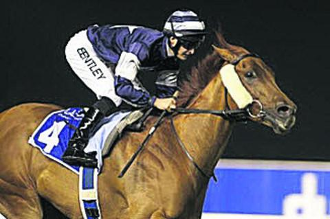 Dubai winner Medicean Man, trained at Sutton Veny