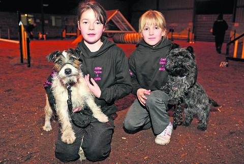 This Is Wiltshire: Millie Sawyer with Tickle and Emily Belcher with Dinkie, who are taking part in national competition Crufts