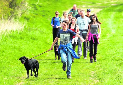 This Is Wiltshire: Fun on last year's Sarsen Trail in aid of Wiltshire Wildlife Trust