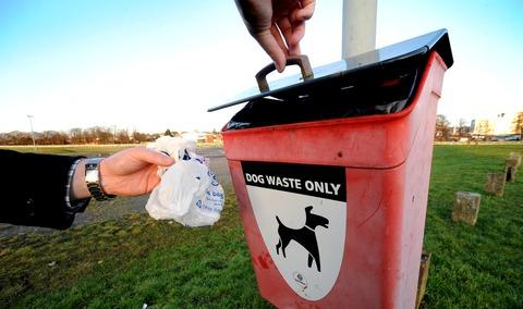 This Is Wiltshire: A dog poo bin was mysteriously taken earlier this month in Covingham