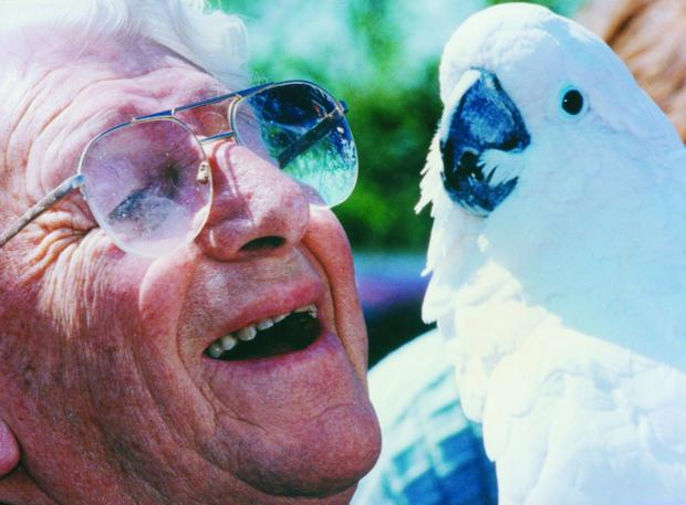 This Is Wiltshire: Johnny Morris has a chat with his feathered friend