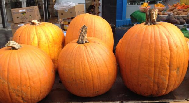 This Is Wiltshire: Grow your own pumpkin carving