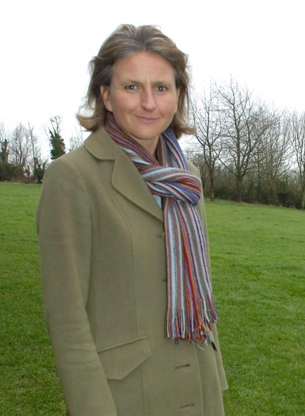 This Is Wiltshire: Wiltshire councillor Laura Mayes, cabinet member for children's services