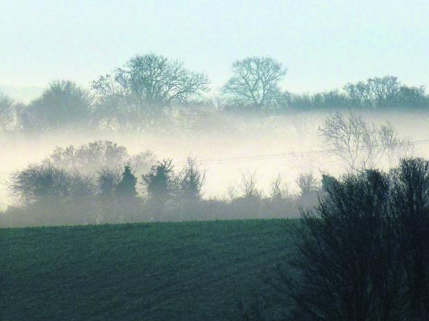 This Is Wiltshire: A misty morning looking across a view on Manor Farm.