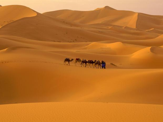 This Is Wiltshire: Desert adventure for charity