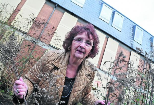 This Is Wiltshire: Bath Road B&B owner Margaret Byrne is appalled at the state of a neighbouring property which has been left vacant for seven years and turned into a tipping site and drug den