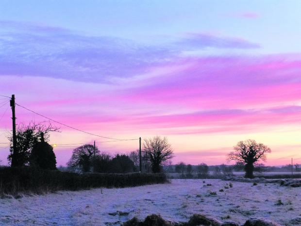 This Is Wiltshire: A rare frosty morning on Manor Farm