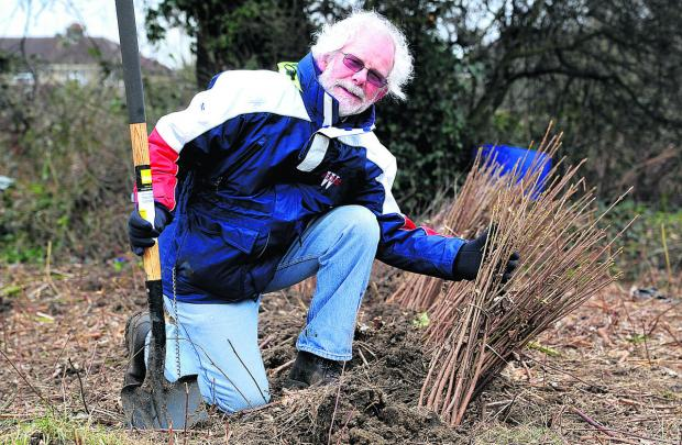 This Is Wiltshire: Steve Thompson will be helping to plant more than  1,000 trees at Kembrey Grass on February 15
