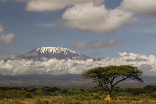 This Is Wiltshire: Mt Kilimanjaro