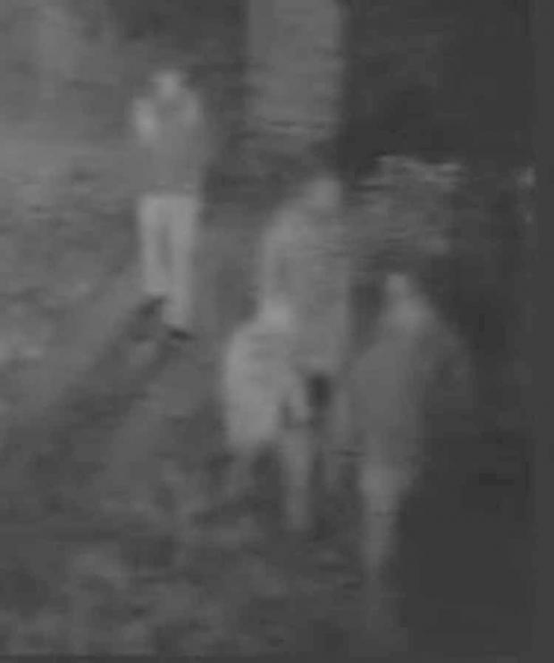 This Is Wiltshire: CCTV footage of the four individuals police wish to speak to following a suspected arson in Purton