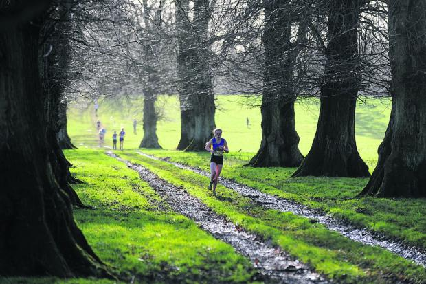 This Is Wiltshire: Caitlin Wosika, from John of Gaunt School, makes her way through the picturesque grounds of Grittleton House School on her way to victory in the junior girls race