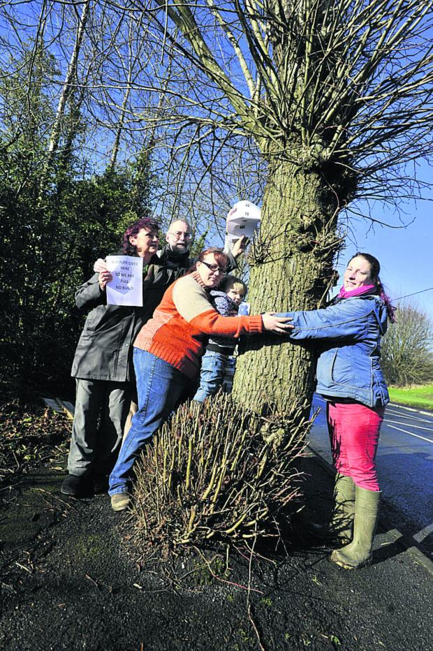 This Is Wiltshire: Cllr Paul Macdonald with Clare Hancock, Stacie Allensby and daughter Skye and Louise Clark, who want to save the lime trees at Spurt Mead               Photo: Glenn Phillips (48108)