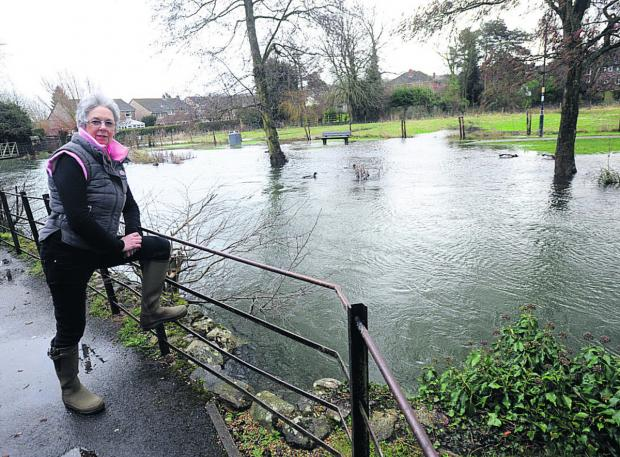 This Is Wiltshire: Val Compton looks out over the River Kennet