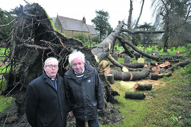 This Is Wiltshire: The Rev Dennis Brett and churchwarden Colin Hornsey examine the remains of the pine