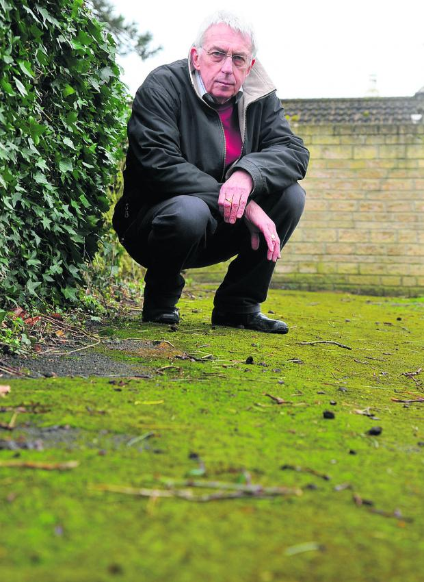 This Is Wiltshire: Nicholas Woodhouse at the area of moss where his wife Diana fell