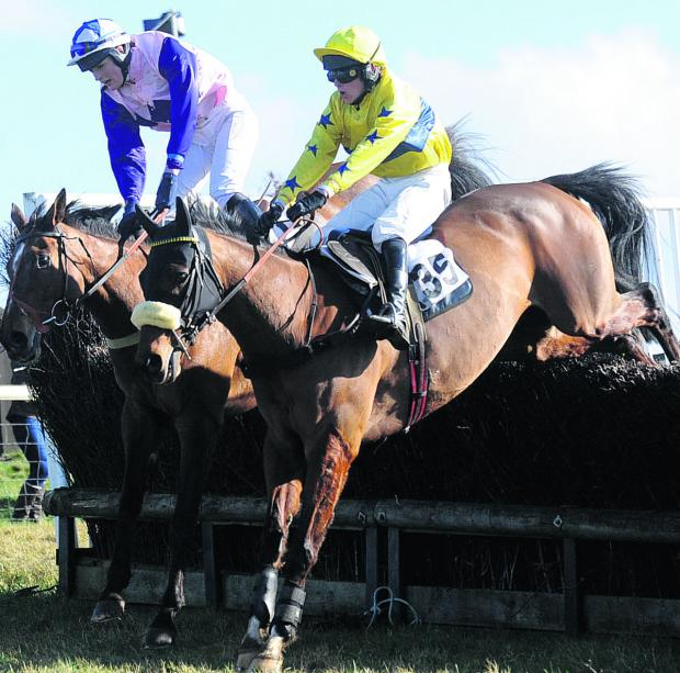 This Is Wiltshire: aCTION FROM THE The Four, Five, Six and Seven Year Olds open Maiden race at the Vine & Craven meeting at Barbury racecourse on Sunday (Picture by Diane Vose)