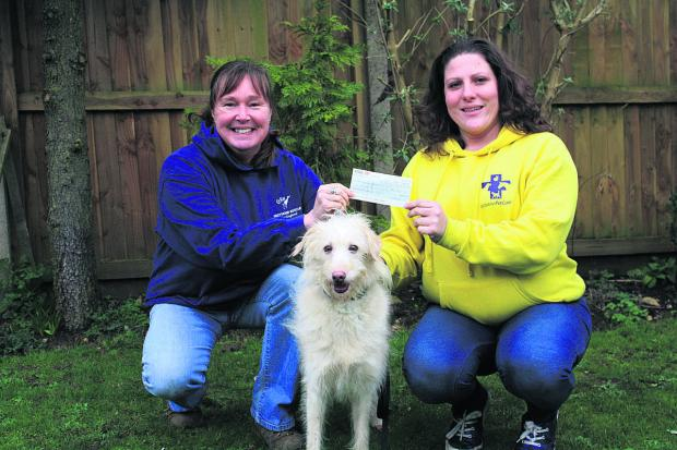 This Is Wiltshire: Jan Lake, chairman of trustees of GRWE, left, receives the cheque from Jo Middleton, who will now be caring for lurcher Mishka