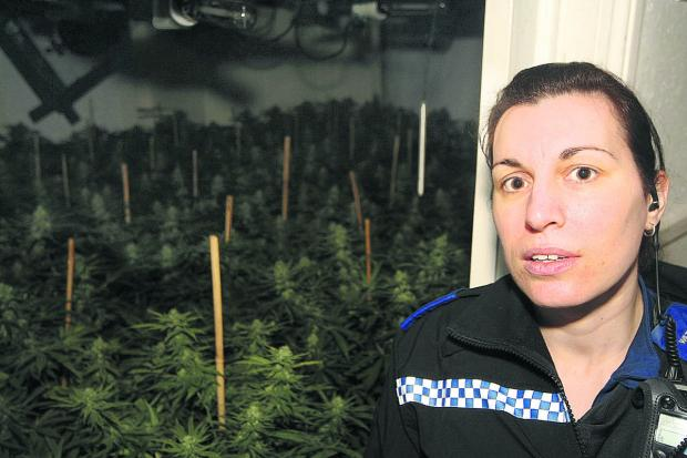 This Is Wiltshire: The PCSO for Broadgreen,  Emma Millarvie