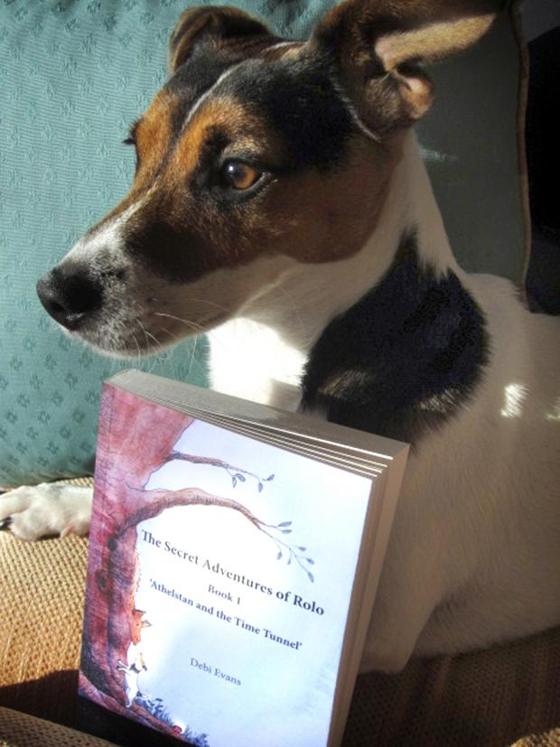 This Is Wiltshire: Rolo and the first book