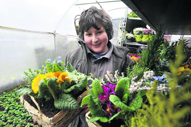 This Is Wiltshire: Anise Mehrez, 13, of Neston, has set up his own online plant sales business