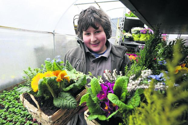 This Is Wiltshire: Pod Mehrez, 13, of Neston has set up his own online plant sales business  Photo: Glenn Phillips (49273)