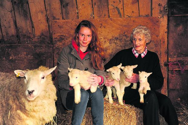 This Is Wiltshire: Marie Escott and granddaughter Chloe Keen with the four lambs