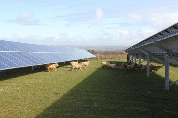 This Is Wiltshire: Event will promote solar farm ahead of inquiry