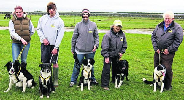 This Is Wiltshire: The Cotswold club's Cyclones team or (l-r); Flynn, Rocky, Dexter, Tammi (with club captain Pauline Caddick) and Poppi