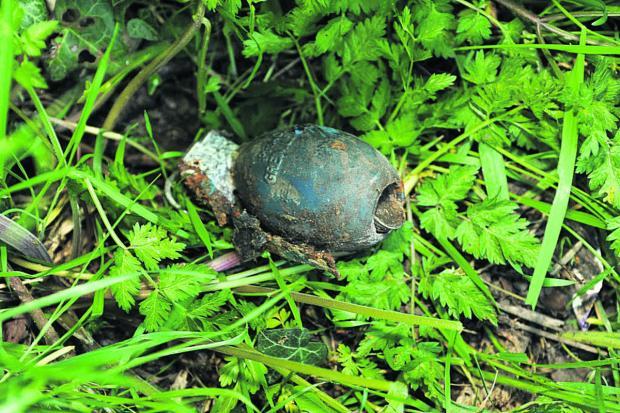 This Is Wiltshire: The training grenade found near the roadside