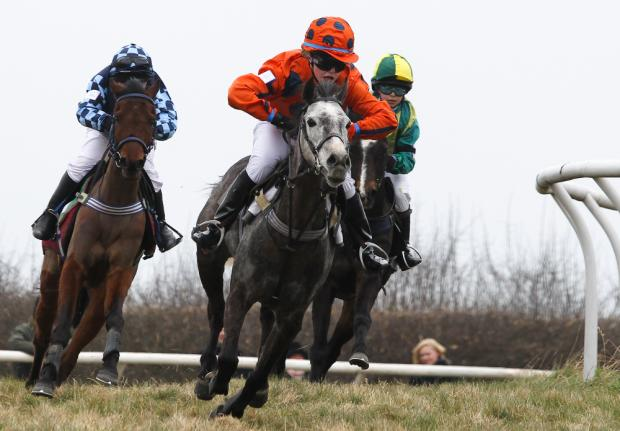 This Is Wiltshire: POINT TO POINT: Ramsbury's Caspar saddles up at Lockinge