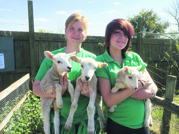 This Is Wiltshire: From left, Shelly Pattinson and Jess Turner with the two-week-old Easter arrival