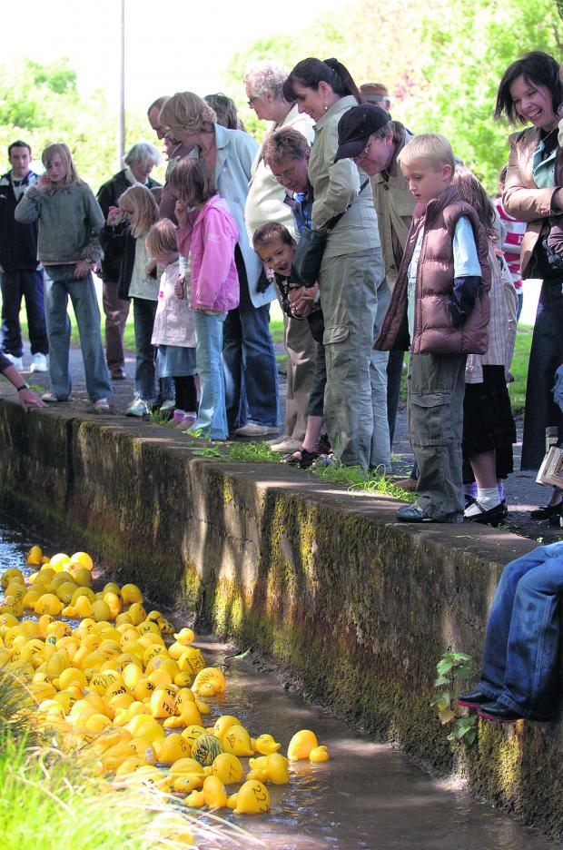 This Is Wiltshire: Ducks in a row – wading in for a previous duck race in Wroughton